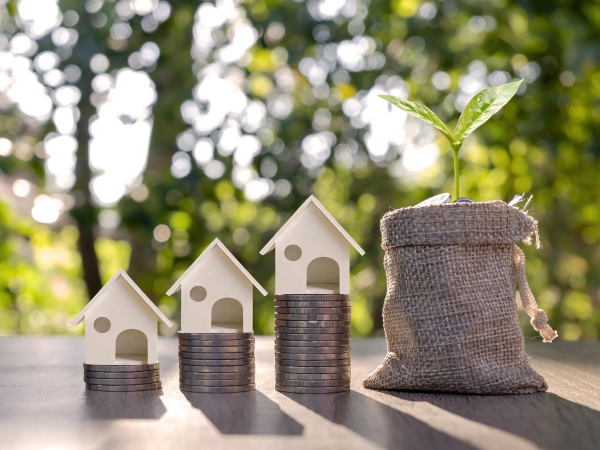 Tree growing on money bag and house model on a pile of money concept